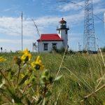 Point Robinson Lighthouse on Vashon Island - flowers