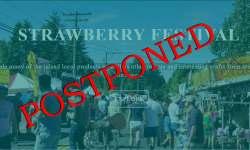 2020 Vashon Island Strawberry Festival Postponed