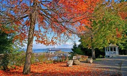 Point Defiance Park