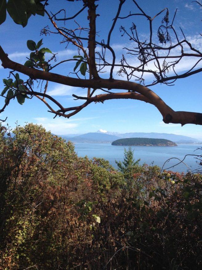 Hat Island near Annacortes Washington
