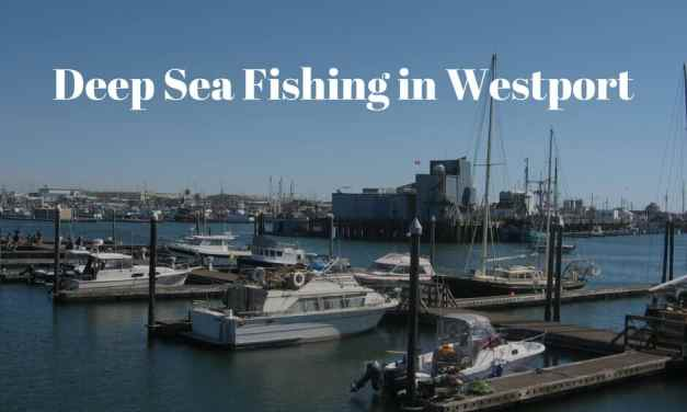Deep Sea Fishing in Westport