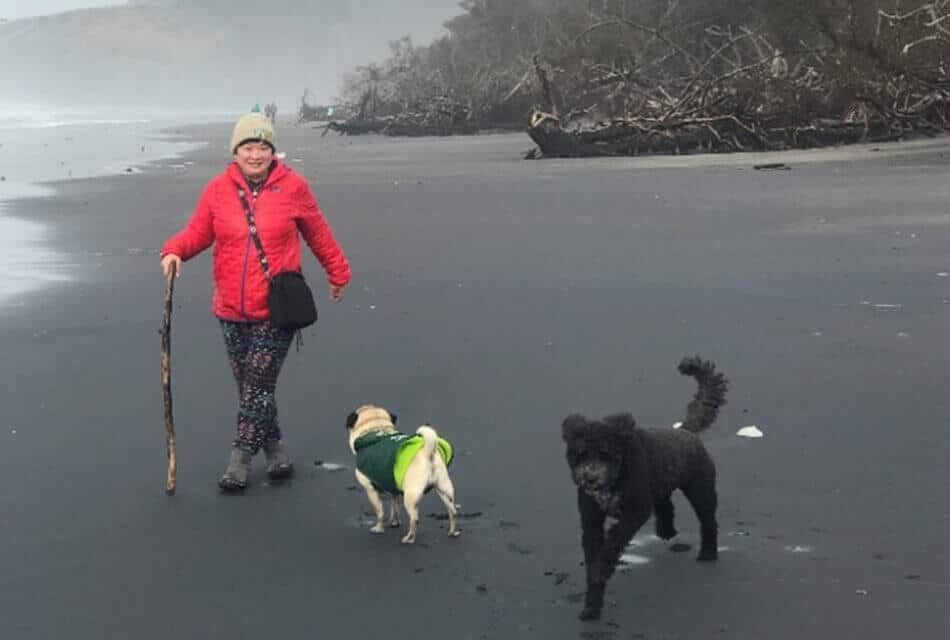Cape Disappointment Beach Dogs