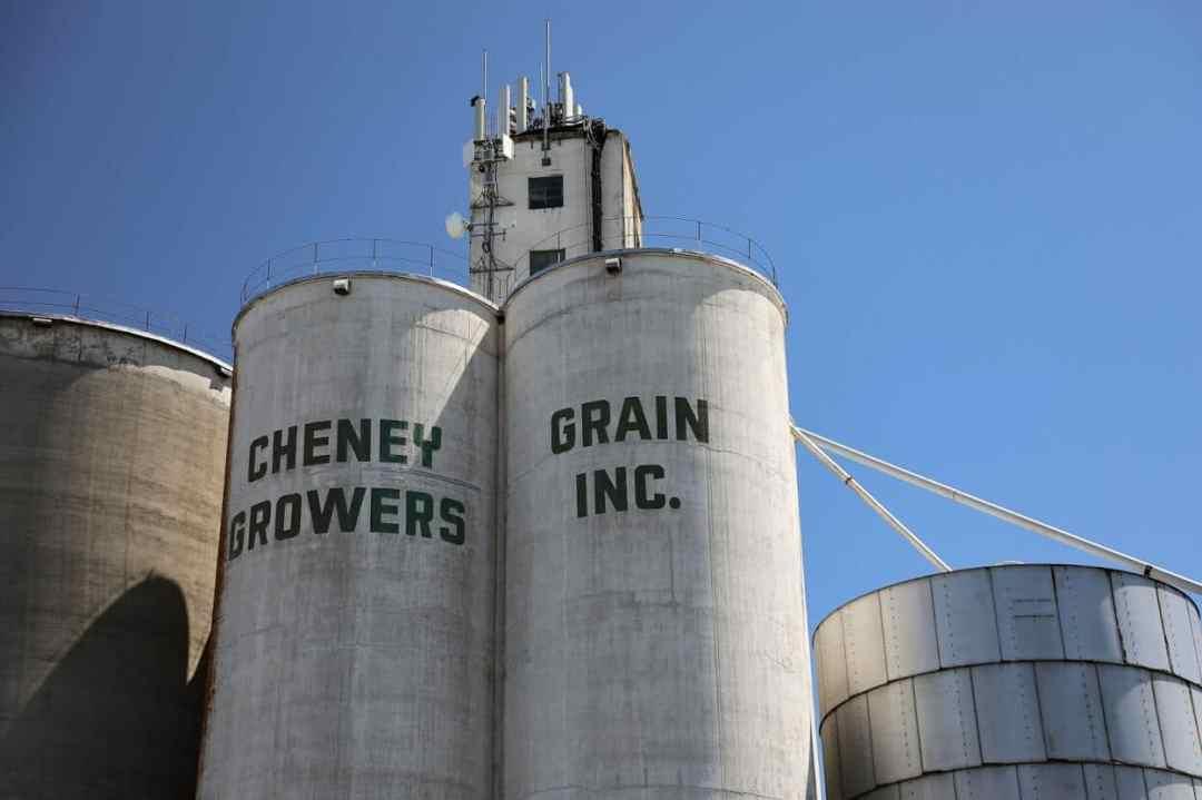 cheney-grain