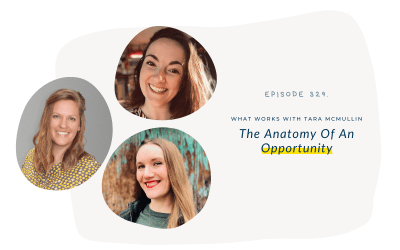 EP 329: The Anatomy Of An Opportunity