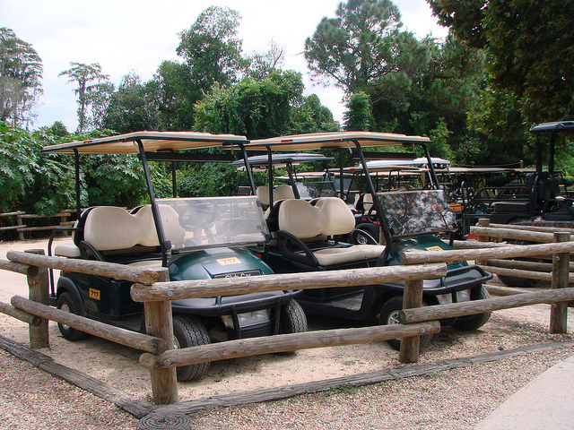 Rental Golf Carts at the Cabins at Fort Wilderness