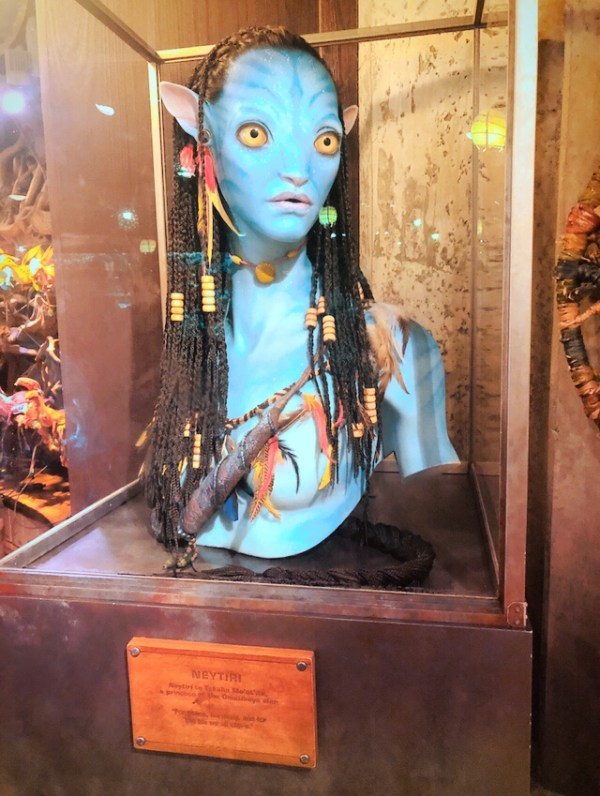 Na'vi bust inside Windtraders Shop at Disney's Animal Kingdom