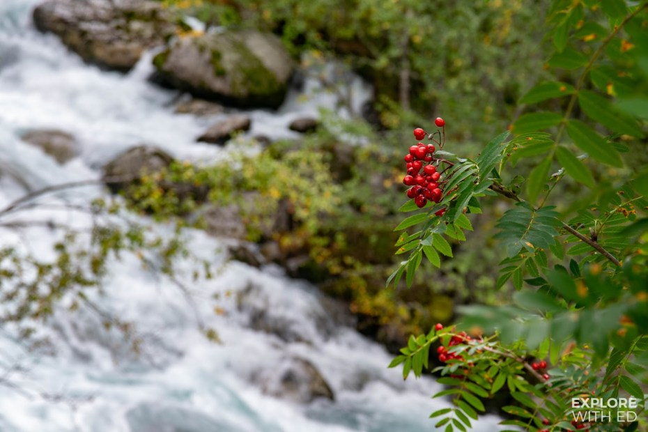 River walk in Jostedalsbreen National Park
