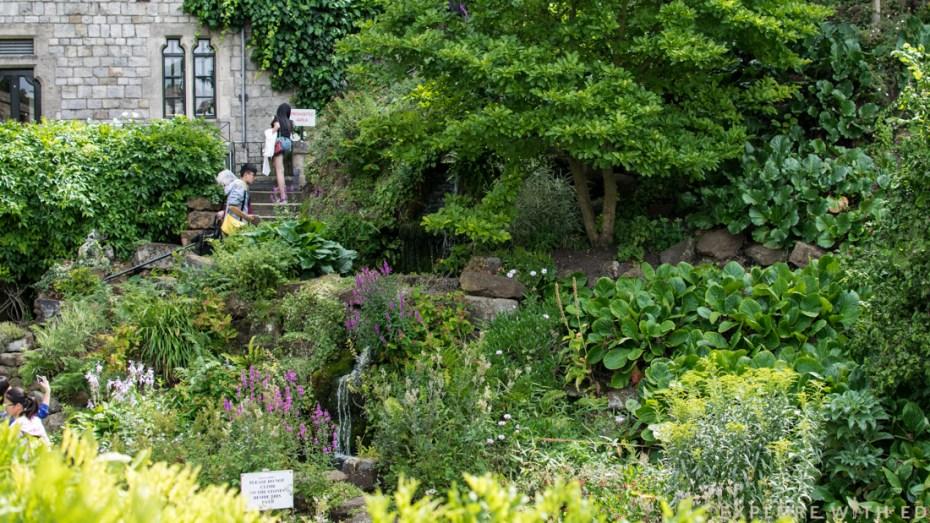 Windsor Castle Charity garden