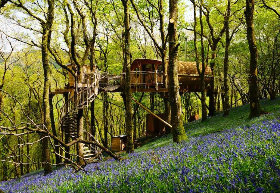 Living Room Treehouses, unique places to stay in Wales