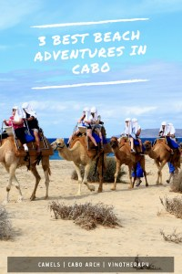 Looking for the best beach adventures in Cabo. Pin this for your adventure to begin.