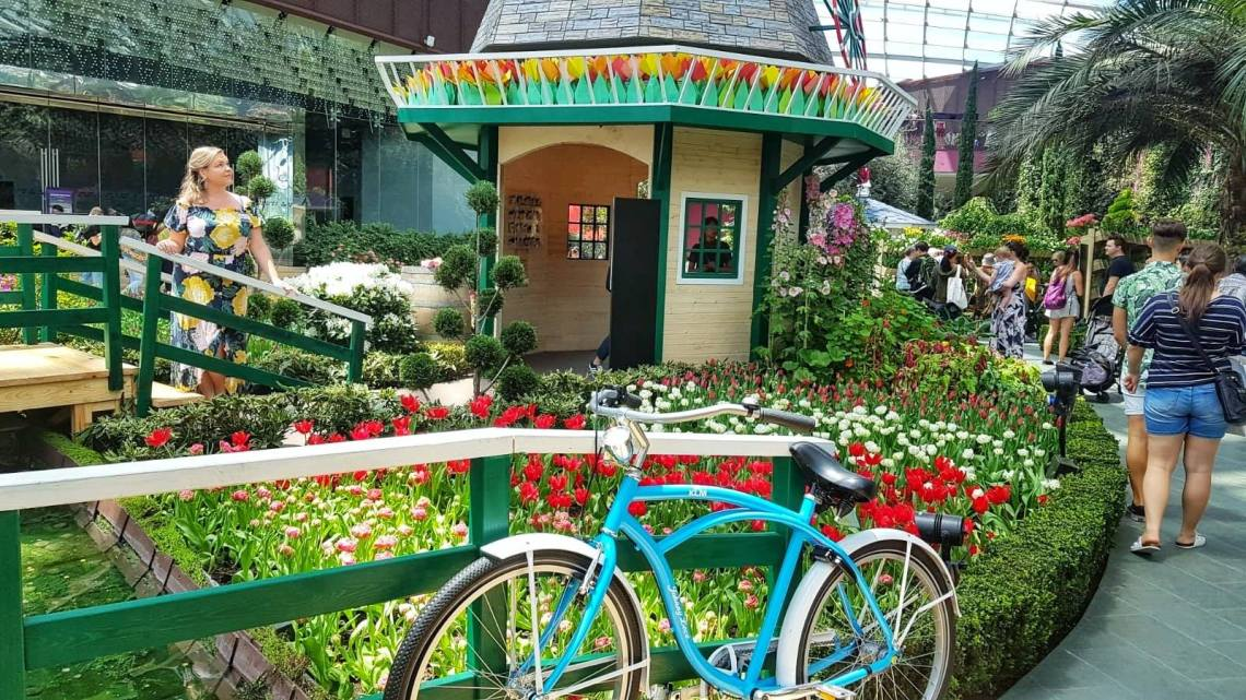things to do with kids in Singapore - Flower dome