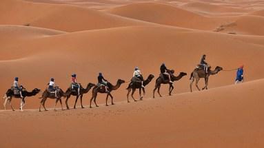 jaisalmer-desert-camping-jaisalmer-4hynkAx-1440x810