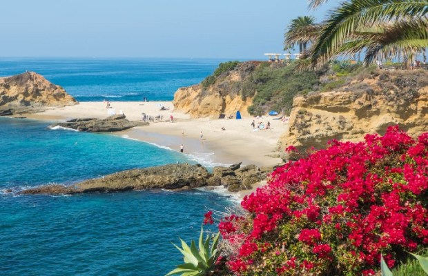 Top 11 Most Stunning Cliff-Side Beaches of USA