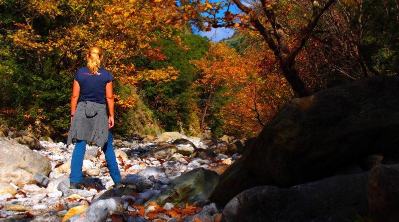 Peloponnes – im Rintomo Canyon