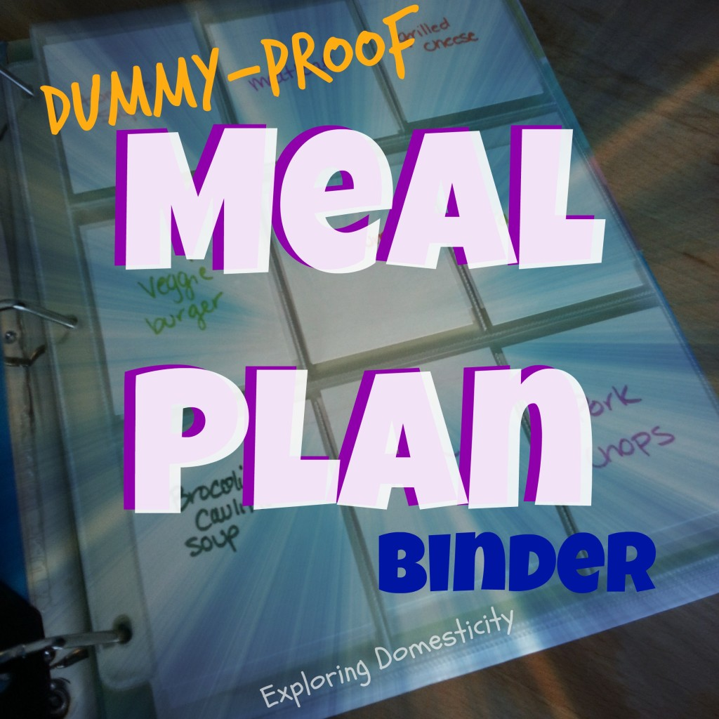 The Dummy Proof Meal Plan System Exploring Domesticity