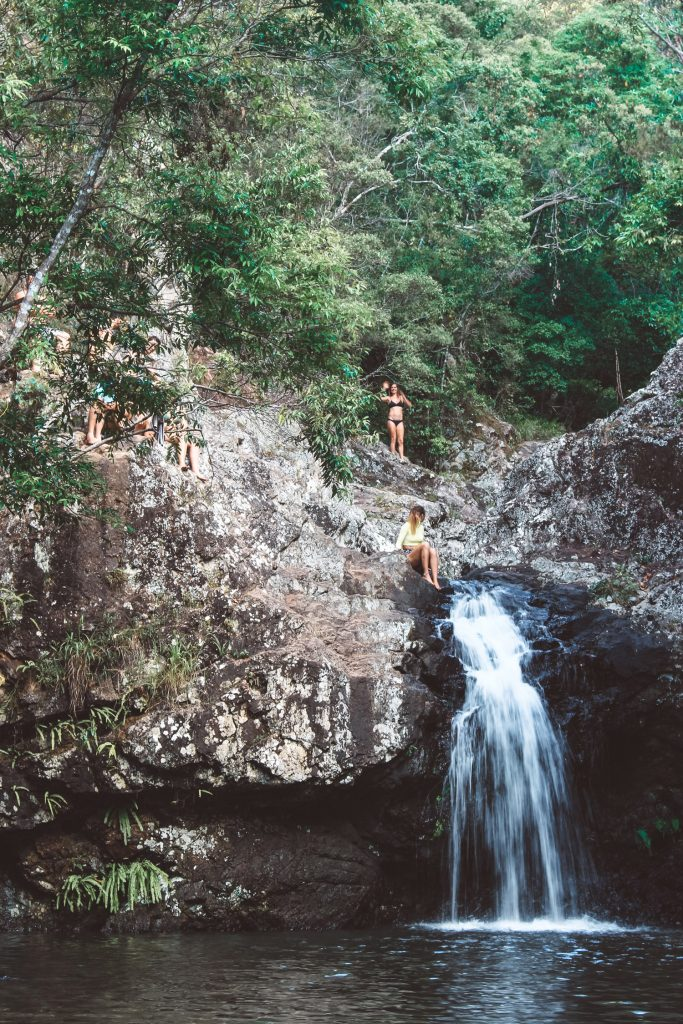 brisbane swimming holes kondalilla falls
