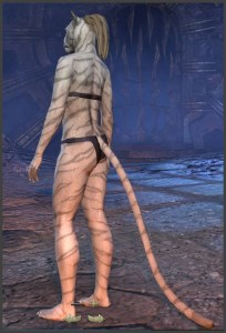 Body Markings of the Khajiit - Position 7