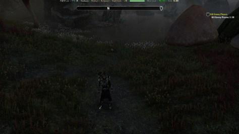 Exploring the Elder Scrolls Online beta Addon
