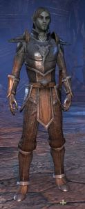 Exploring the Elder Scrolls Online - Male Dark Elf