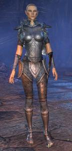 Exploring the Elder Scrolls Online - Female High Elf
