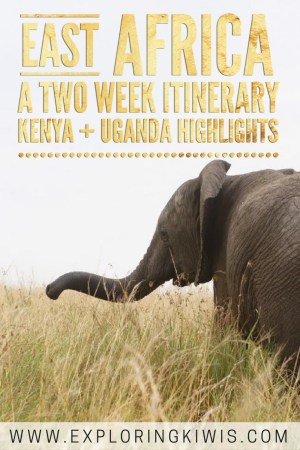 2 weeks in East Africa - Explore Kenya and Uganda. An amazing highlight itinerary including safaris, game drives, chimp and gorilla tracking and more!
