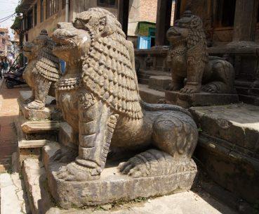 Kathmandu day trip exploring kiwis