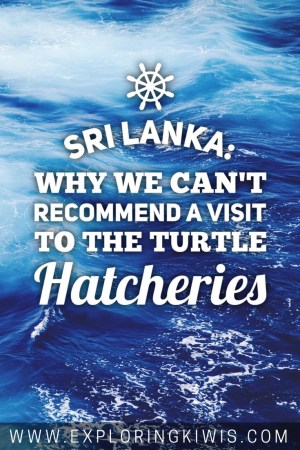 Unfortunately our visit to a Sri Lankan turtle hatchery was anything but what we'd hoped for. Find out what you need to know before deciding whether or not you too want to visit.