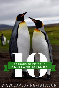 Find out why the Falkland Islands should be top of your list! Exciting, diverse and chock-full of nature. A surprising paradise - they're just waiting for you.