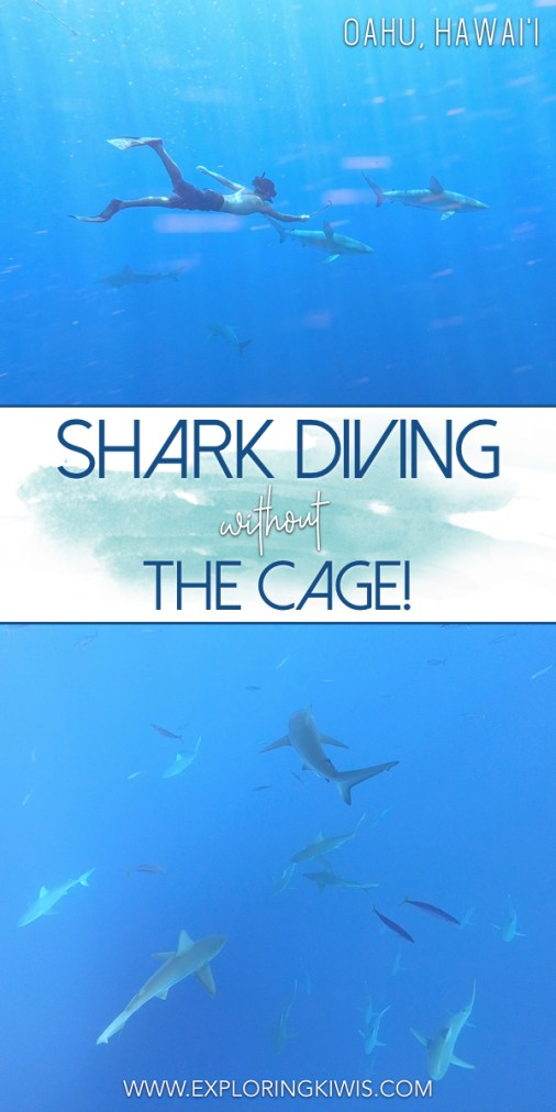 Shark diving in Hawaii without the cage - it's safe, fun and a must-do on your vacation! One Ocean Diving protect sharks by educating people as they snorkel in the wild, cageless. One of the best things we did whilst in the islands!