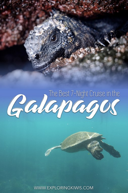 The best 7-night cruise through the Galapagos Islands. Read our review as we look at different itineraries, food offerings, activities and more. A real bucket-list destination in Ecuador. #southamerica #galapagos #galapagosislands #cruising