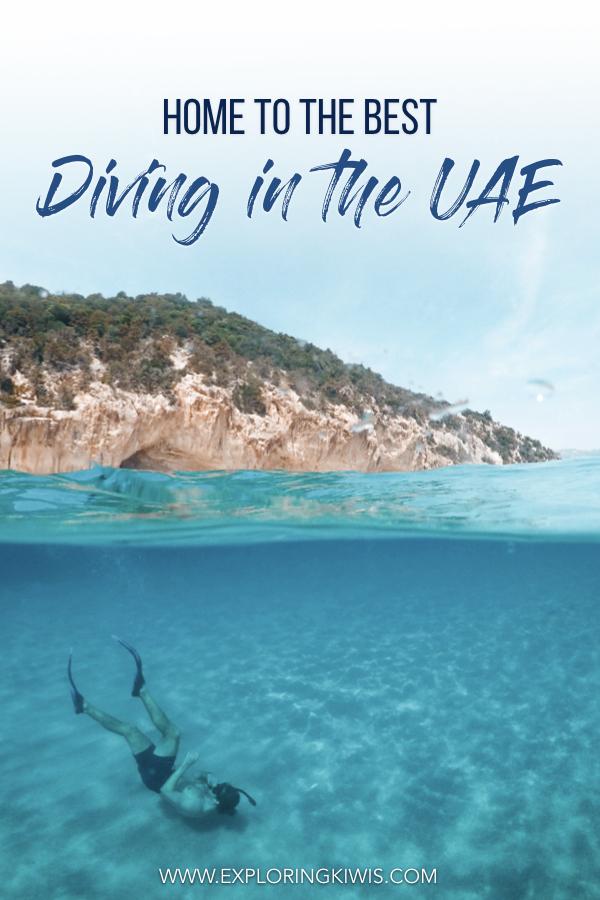 Diving in Fujairah: Al Boom Diving – The Best in the UAE