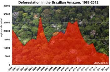 Deforestation Brazil Amazon Rainforest South America