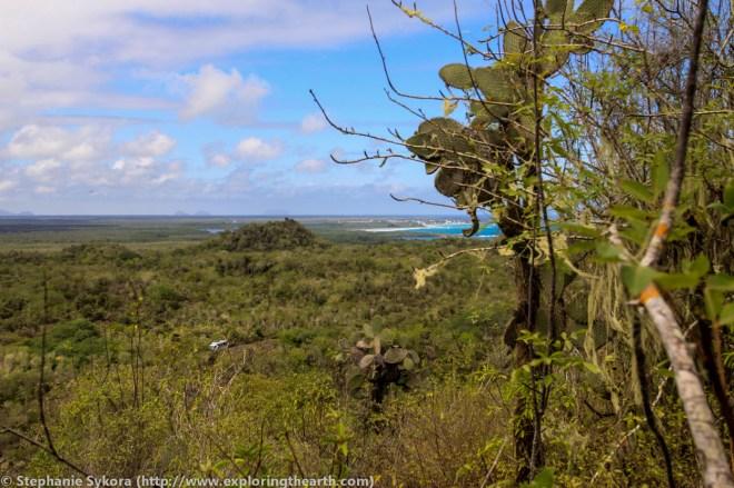 Galapagos, Islands, Galapagos Islands, Ecuador, South America, Darwin, Evolution, Travel, Adventure, Isabela, Volcanos