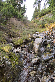 after emerging from the trees we looked up the steep gully