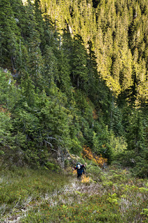 Climbing the steep gully to the circe on the stow creek approach to H'kusam Mountain
