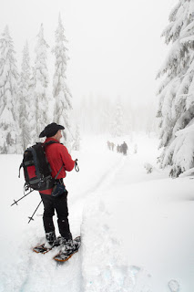 Island Mountain Ramblers leaving the summit of Mount Allen Brooks