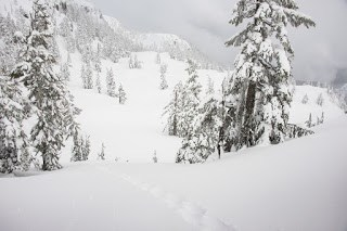pristine snow slopes of Mount Russel on Vancouver Island