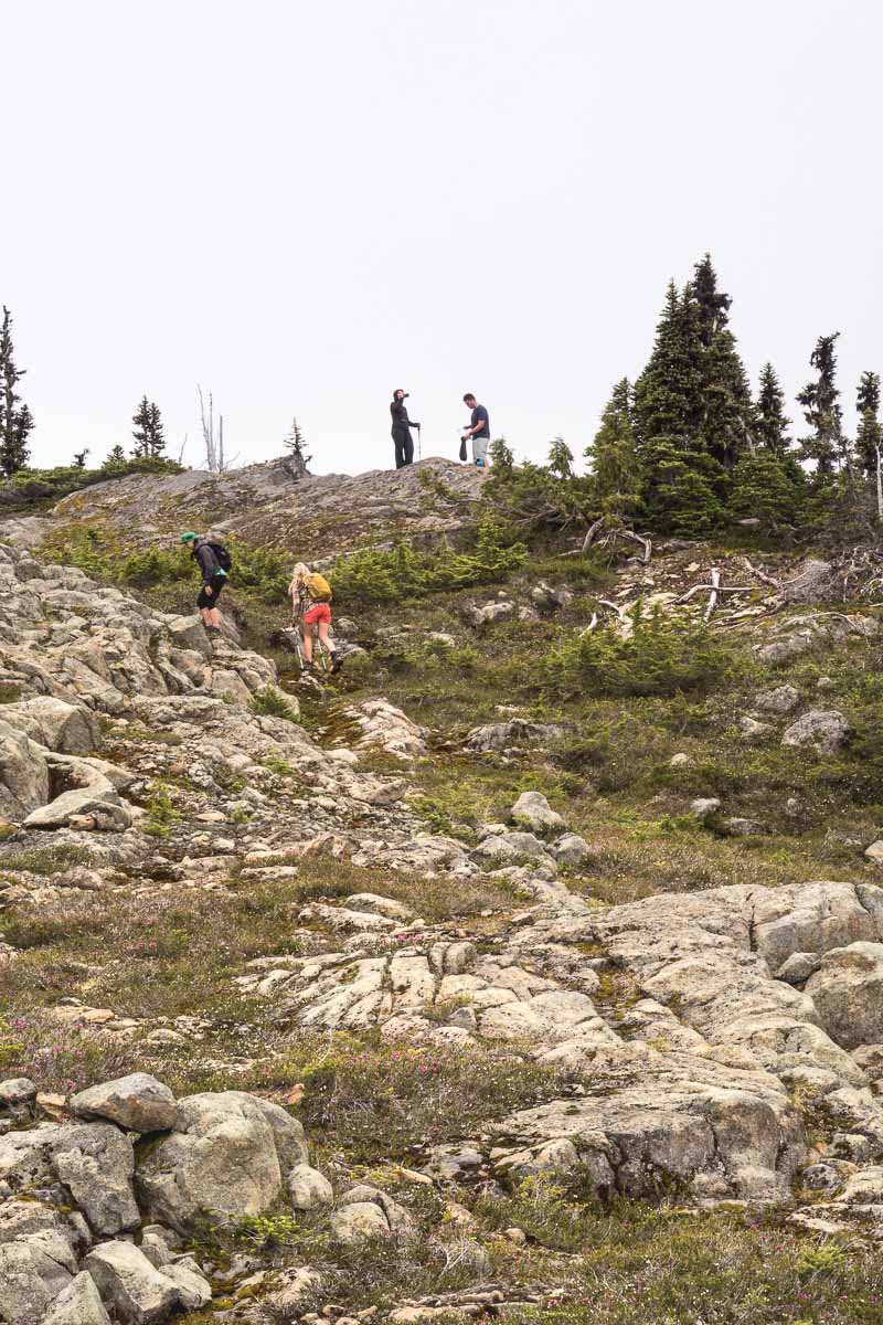 Ascending the final section toward the summit of Rodgers Ridge.