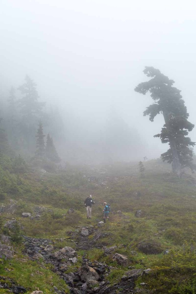 The cloud descends on the Island Mountain Ramblers as we descend Rodgers Ridge.