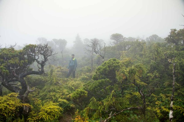 Rishi in the mists on Mount Saint Parick on our route to Lowrie Bay
