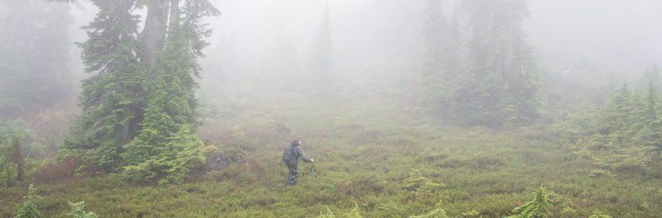 Mount Service, Nanaimo Lakes, Explorington, Matthew Lettington, Hiking Vancouver Island