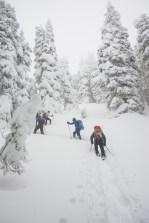 snowshoeing, vancouver island, explorington, matthew lettington, hiking, mountaineering, Mt Spencer, Alberni Valley
