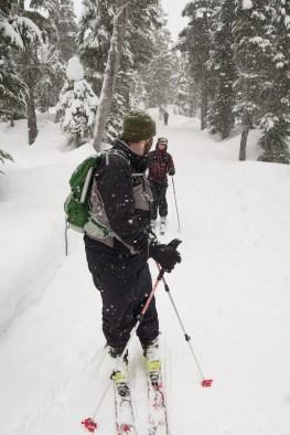Stranthcona Park, Ski touring, backcountry skiing, explorington, Matthew Lettington, Paradise Meadows, Mount Elma