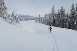 Ladysmith, Vancouver Island Ski Traverse, Mount Coronation, Mount Hall