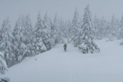 Ladysmith, Vancouver Island Ski Traverse, Mount Coronation, Mount Hall