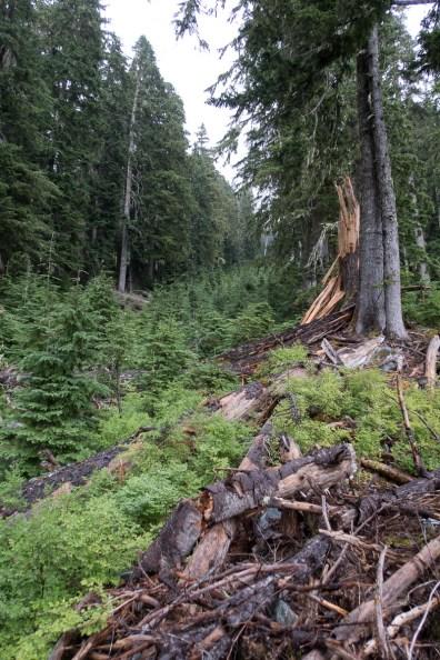 jagged-mountain-hiking-screen-1406