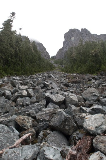 Jagged Mountain, Hiking, Mountaineering, Vancouver Island