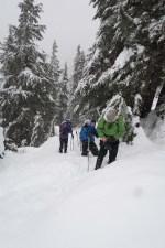 snowshoeing Mount Elliot