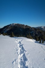 the snowshoe track, Mount Gibson in the background