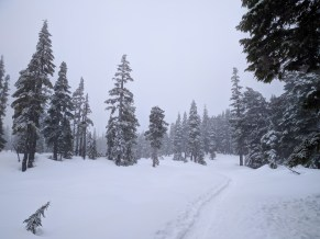 a deep snowshoe track cuts across Battleship Lake in Strathcona Park